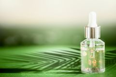 Transparent cosmetic bottle with pipette standing on green table with palm leaves shadow. Facial skin care concept. Natural vegan royalty free stock image