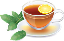 Transparent cup of black tea with lemon and mint Royalty Free Stock Images