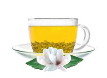 Transparent cup of green tea and jasmine flowers isolated. On white background stock images