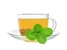 Transparent cup of green tea and mint herb Stock Photo