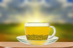 Transparent cup of green tea on wooden table Stock Images