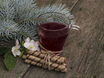 Transparent cup of tea, fir-tree branch and floret Royalty Free Stock Images