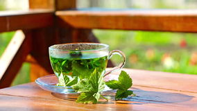 Transparent cup of tea. Cup of hot herbal tea on nature stock footage