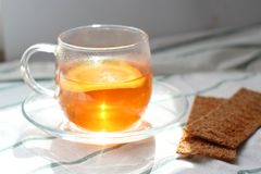 Transparent Cup of tea with lemon, rye crispbread, natural light, breakfast stock images