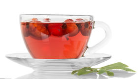 Transparent cup with tea and rose hips  on white Stock Photos