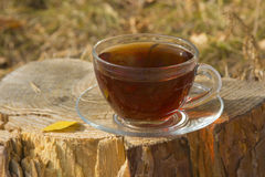Transparent cup of tea standing on the stump Royalty Free Stock Images