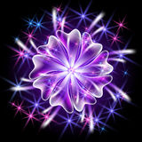 Transparent flower and firework. Glowing background with flower and firework royalty free illustration