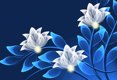 Transparent flowers Stock Images