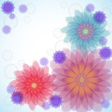Transparent flowers Stock Photo