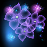 Transparent flowers and stars Stock Photography