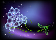 Transparent flowers and stars Stock Image