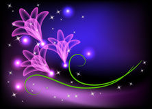 Transparent flowers and stars Royalty Free Stock Photo