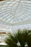 Transparent glass ceiling, modern architectural interior. Royalty Free Stock Photo