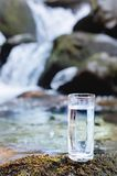 A transparent glass glass with drinking mountain water stands in the moss stone on sun beame against a background of a. Clean frost mountain river. The concept Royalty Free Stock Images