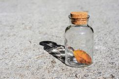 Transparent glass jar and yellow leaf of the tree on the backg. Transparent glass jar and a yellow leaf of the tree on the background asphalt stock photography
