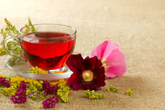 Transparent glass mug with red floral tea. Transparent glass mug with the hot red flower tea Stock Image