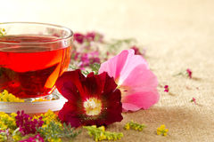 Transparent glass mug with red floral tea. Transparent glass mug with the hot red flower tea Royalty Free Stock Image