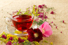 Transparent glass mug with red floral tea. Transparent glass mug with the hot red flower tea Royalty Free Stock Photo