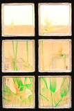 Transparent Glass Tiles with Colorful Flower Paint. Transparent Glass Tiles with a Colorful Flower Paint Background stock image