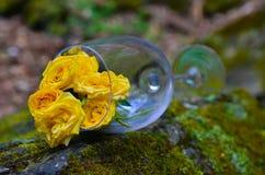 Glass, wine, flowers, beautiful, summer, beauty. Transparent glass of wine, flowers inside the glass, beautiful picture, summer day, beauty among us Stock Photo