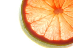 Transparent grape fruit slice Stock Images