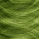 Transparent Green Background Royalty Free Stock Photography
