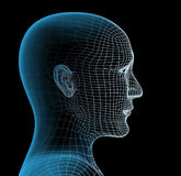 Transparent head of the person. Transparent 3d head of the person - x-ray