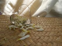 Transparent heart and falling white petals. See through heart on bamboo weaven mat stock photos
