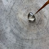 Transparent heart on a rough surface of weathered stamp with rings of old wood and a crack. Perfect Valentine`s Day greeting card royalty free stock photos