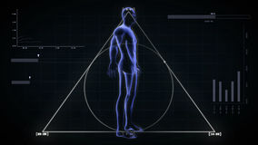 Transparent Human Body with alfa-cannell loop 4K. Transparent Human Body, loop rotation, alfa cahhell 4K stock video
