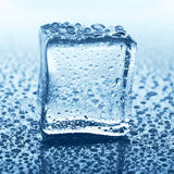 Transparent ice cube with reflection on blue glass with water drops Stock Photography