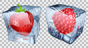 Transparent ice cubes with strawberry and raspberry. Two transparent ice cubes with frozen strawberry and raspberry Stock Images