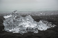 Transparent ice floe on the black sand beach at Jokulsarlon, Iceland Royalty Free Stock Photo