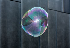 The transparent, iridescent soap bubbles  on black background Royalty Free Stock Photography