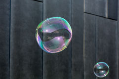 The transparent, iridescent soap bubbles on black background Royalty Free Stock Image