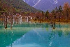 Transparent lake water Stock Photos