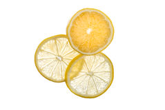 Transparent Lemon Slices Stock Images