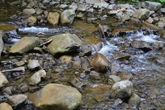 Transparent mountain water flows between stones. stock photography