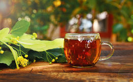 Transparent mug with tea and a lime tree branch. On a wooden brown table in the rays of the sun stock photo