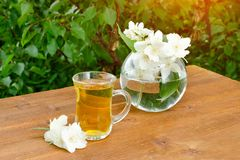 Transparent mug of tea and a vase with jasmine. Greens on the ba royalty free stock photos