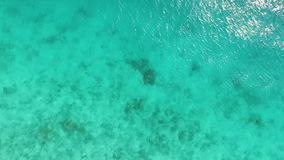 Transparent ocean water near shore, aerial, topview. Transparent turquoise calm ocean water near the shore of the island, aerial, topview stock video