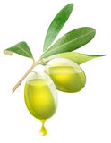 Transparent olives with oil Stock Images