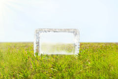Transparent piece of melting ice on green grass Royalty Free Stock Image