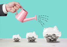 Transparent piggy bank filled with coins on wood background.Saving investment colorful concept.Watering can and money growth draw
