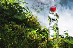 Transparent plastic A bottle of clean water with a red lid stands in the grass and moss on the background of a rugged. Mountain river. The concept of pure Stock Images