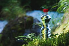 Transparent plastic A bottle of clean water with a red lid stands in the grass and moss on the background of a rugged. Mountain river. The concept of pure Royalty Free Stock Photography