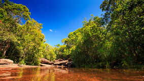 Transparent Pond above Brown Stony Bottom in Tropical Forest. Transparent shallow pond above brown stony bottom among rocks and tropical forest against blue sky stock footage
