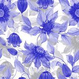Transparent purple clematis flowers on climbing twigs against white background. Seamless floral pattern. Watercolor painting. Hand painted illustration. Fabric Stock Image
