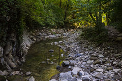 Transparent quiet stream of a mountain river flows among the rocks in the shadow. Of the forest Royalty Free Stock Photos