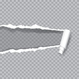 Transparent ripped paper Royalty Free Stock Images